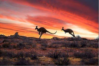australianoutback2