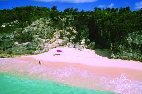 pink-sand-resort1